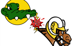 CAIMANS vs KELTED